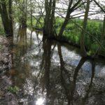 Stierngraben-HoeheFlieth-